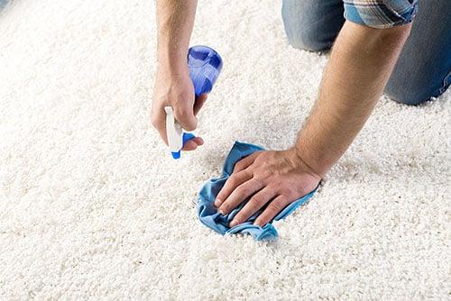 vloer tapijtreiniging